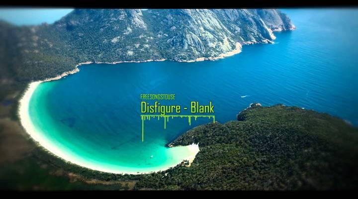 Disfigure – Blank